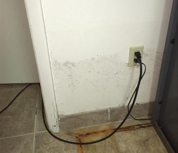 white wall with mold stains, rust stains on tiled floor