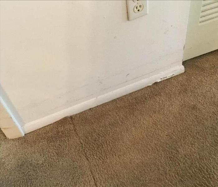 peeled paint, stained wall and wet brown carpet